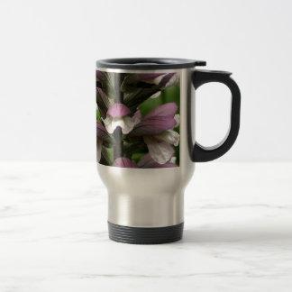 Oyster plant flower in bloom coffee mug