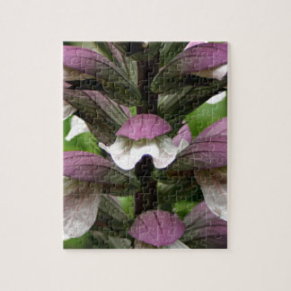 Oyster plant flower in bloom puzzles