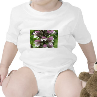 Oyster plant flower in bloom tee shirt