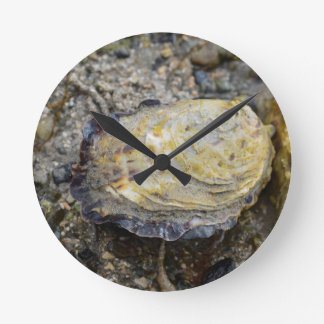 Oyster shell round clock