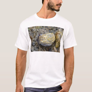 Oyster shell T-Shirt