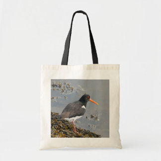 Oystercatcher Budget Tote Bag