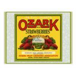 Ozark Strawberries Post Card