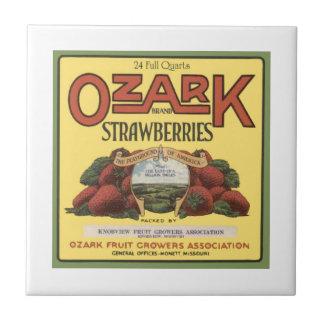 Ozark Strawberries Small Square Tile