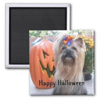 P1080884, Happy Halloween Square Magnet