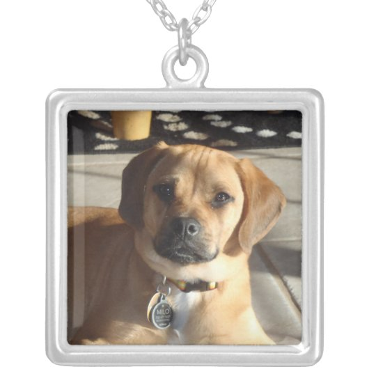 P1090068puggle necklace
