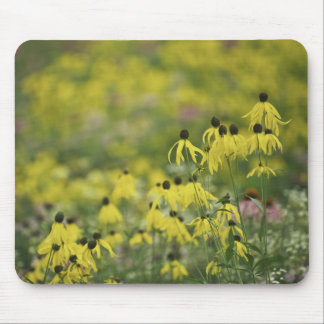 P2526a_yellow coneflower monet_zazzle mouse mat