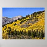 P9270030 - Hill of Golden Aspen