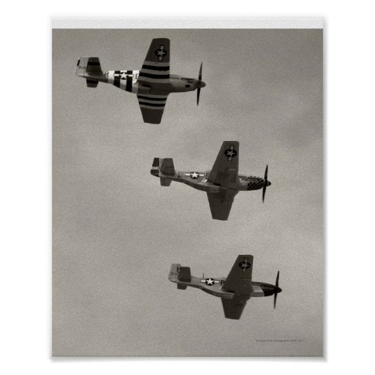 P-51 B and P51D Mustang Poster