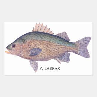 P. LABRAX RECTANGULAR STICKER