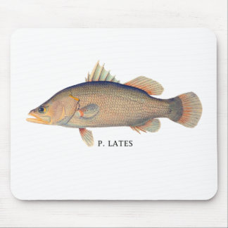 P-LATES MOUSE PAD