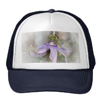 © P Wherrell Beautiful pale purple passion flower Trucker Hats