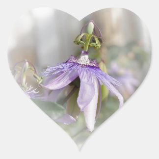 © P Wherrell Beautiful pale purple passion flower Heart Sticker
