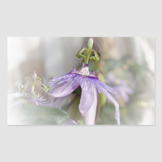 © P Wherrell Beautiful pale purple passion flower Rectangular Sticker