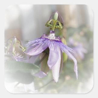 © P Wherrell Beautiful pale purple passion flower Square Sticker