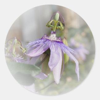 © P Wherrell Beautiful pale purple passion flower Round Sticker