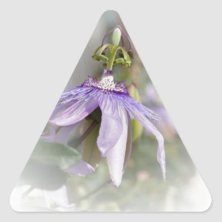 © P Wherrell Beautiful pale purple passion flower Triangle Sticker