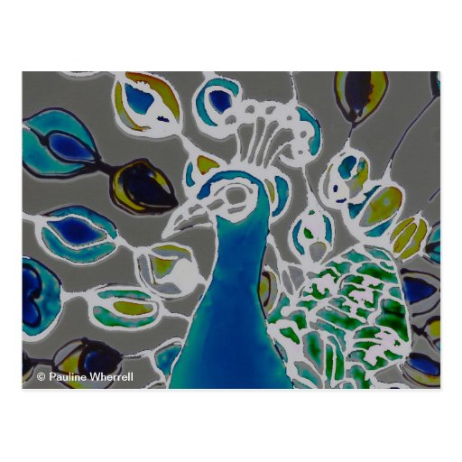 © P Wherrell Contemporary impressionist peacock Postcard