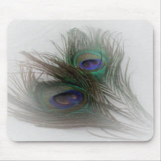 © P Wherrell Contemporary trendy peacock feathers Mouse Pad
