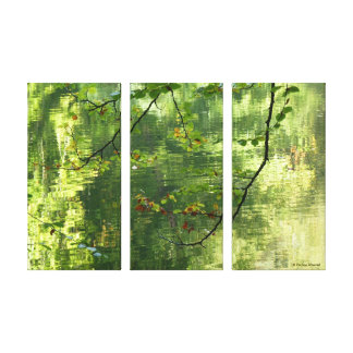 © P Wherrell Hints of autumn leaves over water Stretched Canvas Print