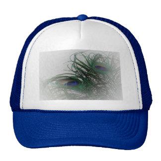 © P Wherrell Pale stylish peacock feathers Cap