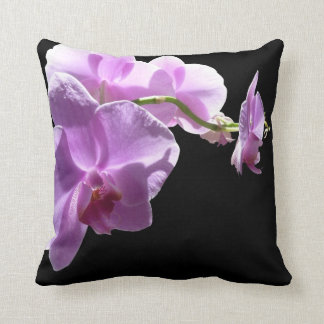 © P Wherrell Pink orchid on black background Cushion