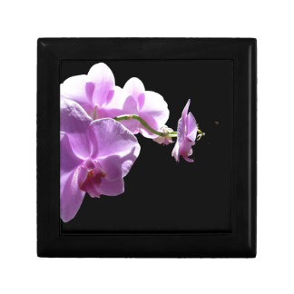 © P Wherrell Pink orchid on black background Trinket Boxes