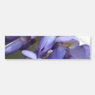 © P Wherrell Purple wisteria fine art photo Bumper Sticker