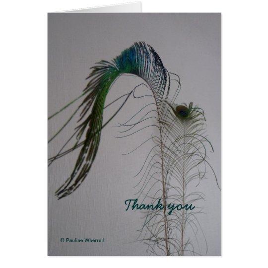 © P Wherrell Thank you peacock feather notecard