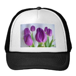 Paarse Tulpen Cap