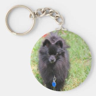 Pablo the Pomeranian Basic Round Button Key Ring