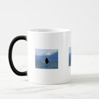 Pacific Ballet Morphing Mug