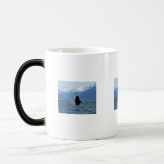 Pacific Ballet Mugs