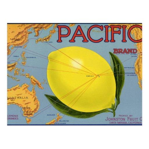 Pacific Citrus Lemon Vintage Fruit Crate Label Art Post Card