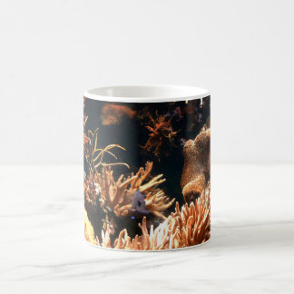 Pacific Coral Reef Mug