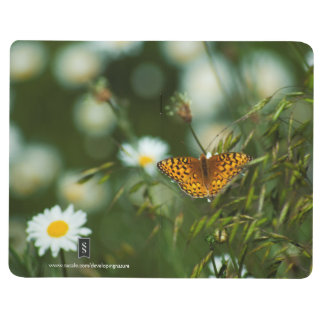 Pacific Fritillary Butterfly Journal