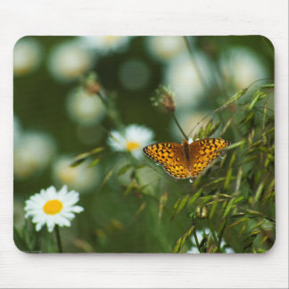 Pacific Fritillary Butterfly Mouse Mat