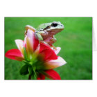 Pacific Green Tree Frog on Red Dahlia Note Card