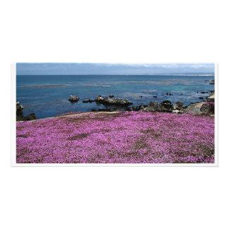 Pacific Grove, California, USA Customized Photo Card