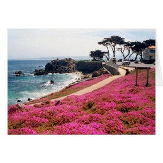 Pacific Grove-Monterey Calif Card