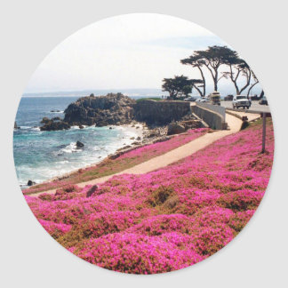 Pacific Grove-Monterey Calif Classic Round Sticker