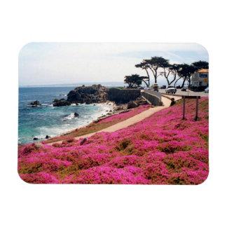 Pacific Grove-Monterey Calif Rectangular Photo Magnet