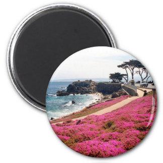 Pacific Grove-Monterey Calif Fridge Magnets