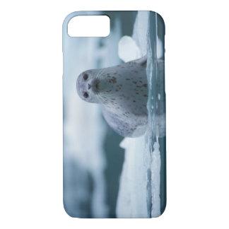 pacific harbor seal, Phoca vitulina richardsi iPhone 7 Case