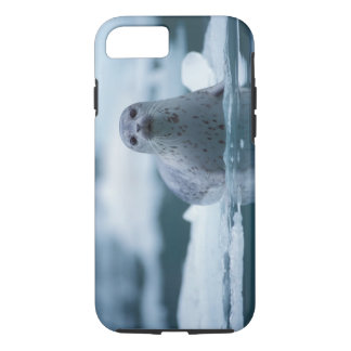 pacific harbor seal, Phoca vitulina richardsi iPhone 8/7 Case