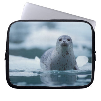 pacific harbor seal, Phoca vitulina richardsi Laptop Sleeve