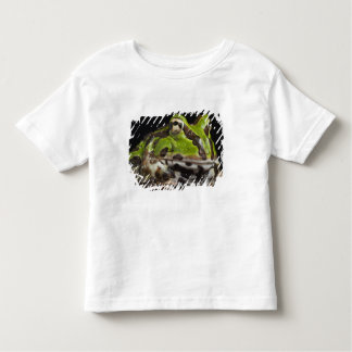 Pacific Horned Frog Ceratophrys stolzmanni) Toddler T-Shirt