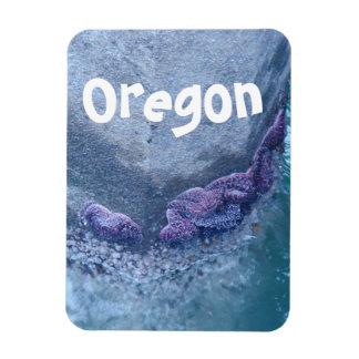 Pacific Northwest Ocean Starfish Oregon Magnet