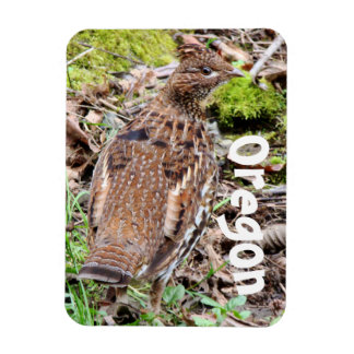 Pacific Northwest Ruffed Grouse Bird Oregon Magnet