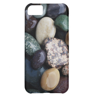 Pacific Northwest USA, Colorful river rocks iPhone 5C Case